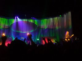 Alice in Chains in Kansas city 2010 by dusthimself