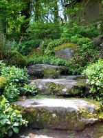 Japanese Gardens Steps by Just4Funphoto