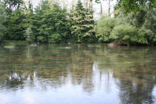 River stock by AnnieSue-stock