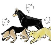 Hetalia-Germany's dogs by diogonen