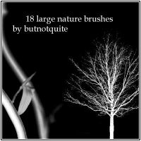 18 Nature brushes by butnotquite
