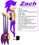 Zach the Hedgehog by The-Blonde-Nerd