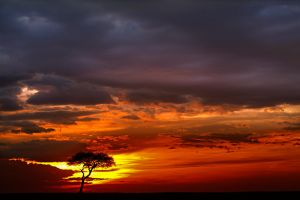 My Africa 49 by catman-suha