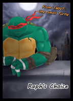 Raph's Choice - Cover by KameBoxer
