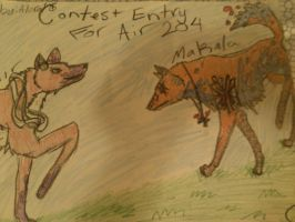 Contest entry for Air 204!!! by Alora18