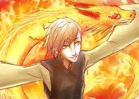 Dragon and Fire .:EDIT:. by fliff