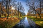 Autumn view... _45_ by my-shots