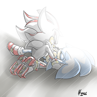 Sonadow - Letting in the Light by BlueNeedle-Inu