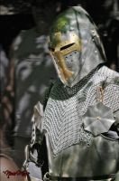 The Knight... by BeRuud