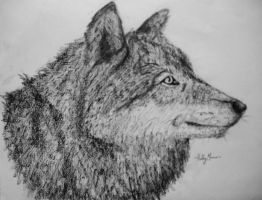 Charcoal Wolf by Marmiexx