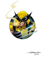 wolverine circle color by redeve