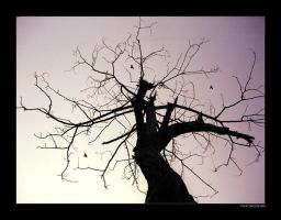 TREE OF LIFE by 8088