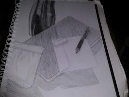 Notebook and Other Possessions by DCMKfreak1412