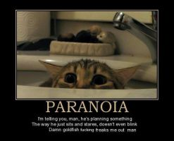 paranoia by yq6