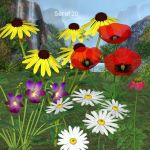 Wild Flowers and Poppies by oldhippieart