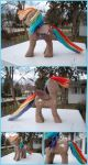 Rainbow Dash Woodwork IV by xofox