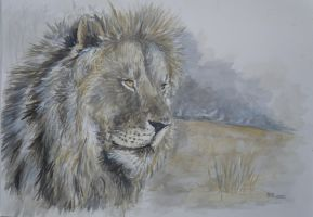 king of the savanah by acrylicwildlife