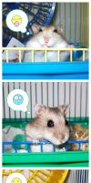 Emoticon Hamsters by emmil