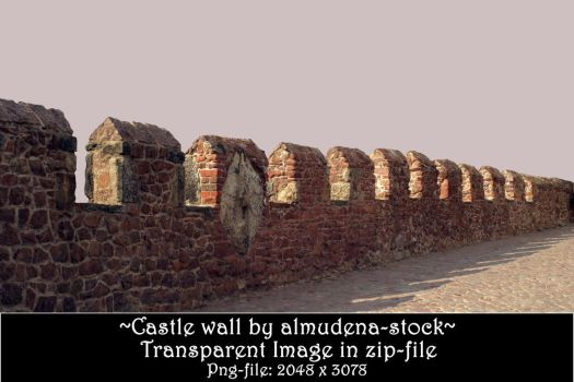 Castle wall - transparent file by almudena-stock