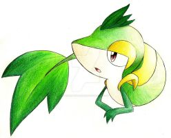 My Snivy: Traditional by XSpiritWarriorX