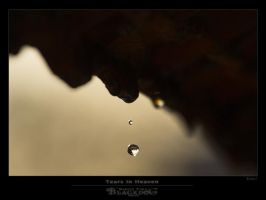 Tears In Heaven by BlackdoG-MT