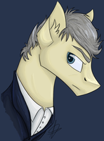 Twelfth Doctor by GoldenNove