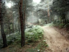 Boraboy Forest 2 by CoolBlue-Gord10