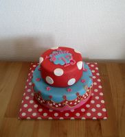 Oilily Cake by Naera
