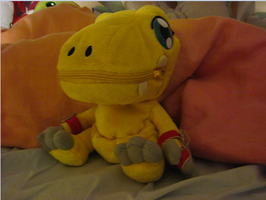 My Agumon plushie by PipecleanerFTW