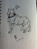 Kitas wolf form by 01whitewolf