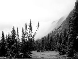 Wyoming Mist by StolenSecrets