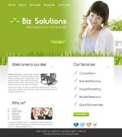 Biz Solutions Web Design by Ambrozial