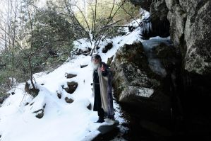 Wizard of Ice 2014-14-02 22 by skydancer-stock