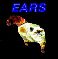 EARS cat 2 by Whitsteen