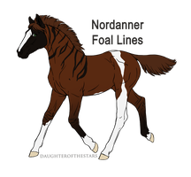 A2768 WW NN - foal design by WhiteWoodWardens