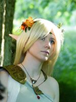 Deedlit Record of Lodoss War cosplay (artwork) by Wildyama