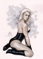 Black Canary by MMcDArt