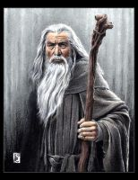 Ian Mckellen, Gandalf the Grey by louissollune