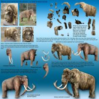 Mammoth_photoshop_breakdown by Dantheman9758