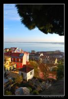 Colors of Lisbon by Ana-D