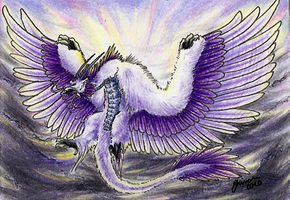 ACEO - Avalanche from the Sky by ShadeofShinon