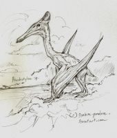 Pterodactylus request series 1 by symbion-pandora