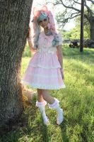 Sweet Lolita 2 by Whatsername-Cosplay