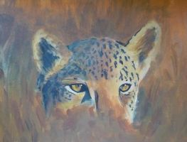 Leopard's eyes by dreamsaddict
