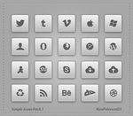 Simple Icons Pack-1 by slayerD1