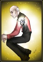Picard: Mechanical Heart by loonylucifer