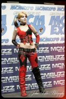harley quinn - cosplay 02 by Relion
