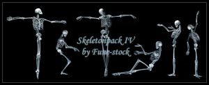 Skeletonpack4 by Fune-Stock