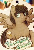ThunderCloud - Pony Badge Commission by Sparkle-And-Sunshine