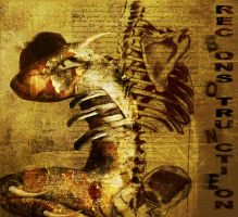 Bone Reconstruction by reincarnation